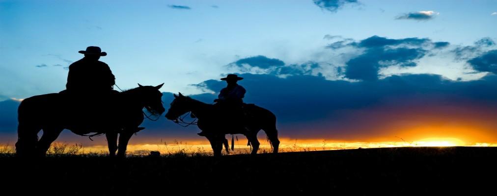 ridex.co.il – טיולי סוסים