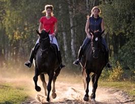 טיול סוסים רומנטי, טיולי סוסים רומנטיים, רכיבה רומנטית