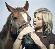 רכיבה רומנטית, רכיבה טיפולית, סוסים