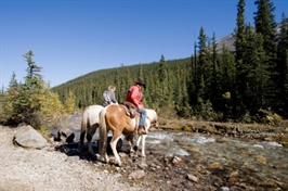 טיולי סוסים רומנטיים, טיול סוסים רומנטי, רכיבה רומנטית