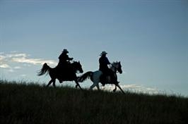 רכיבה רומנטית, טיול סוסים רומנטי