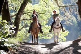 רכיבה רומנטית, טיול סוסים רומנטי, הצעת נישואין